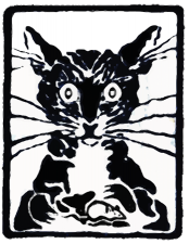 SRC-Logo-Cat-675