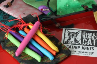 Six Rainbow Cat Joints with Bags