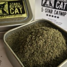 Today is Less Salt More Herbs Day  our catshellip