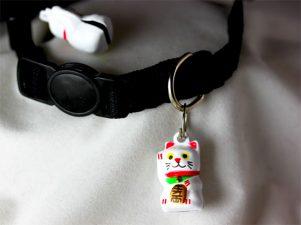 Lucky Bell Charm on Collar