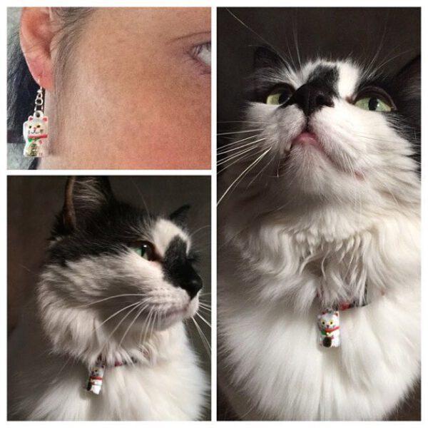 Neko Earrings and Collar Set