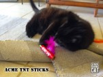 Wolfie Loves Acme TNT Sticks