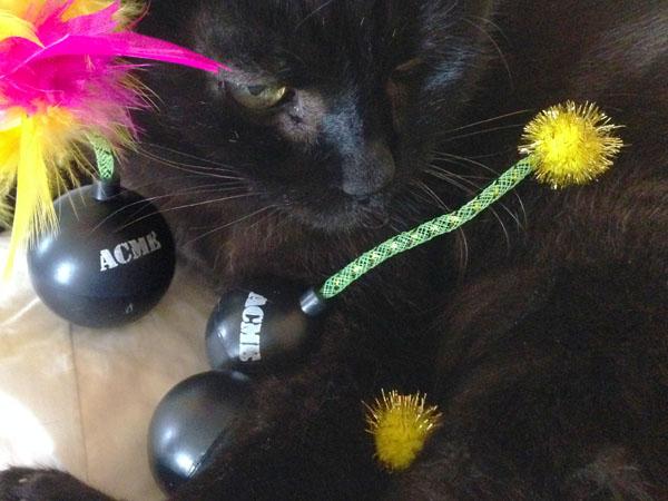 Acme Cat Bombs with Catnip