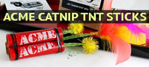 acme catnip tnt sticks