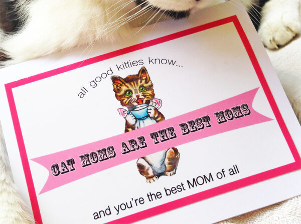 Cat Moms Are the BEST Moms - Greeting Card