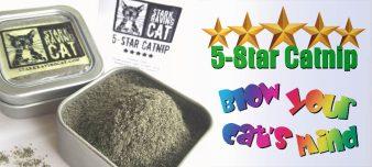 5-Star-Catnip