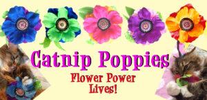Catnip Poppies