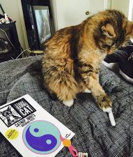 Ginger and Catnip Joint from Nirvana Pack