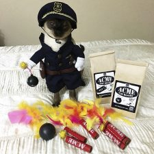 Police Cat and Acme Cat Bombs