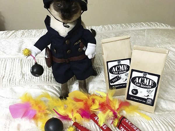 Police Cat and Acme Cat Bombs Catnip Toy