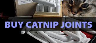 Buy Catnip Joints