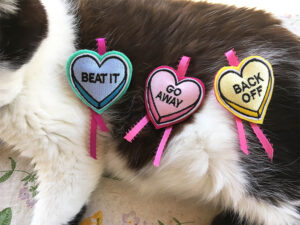 Love Bite Catnip Hearts