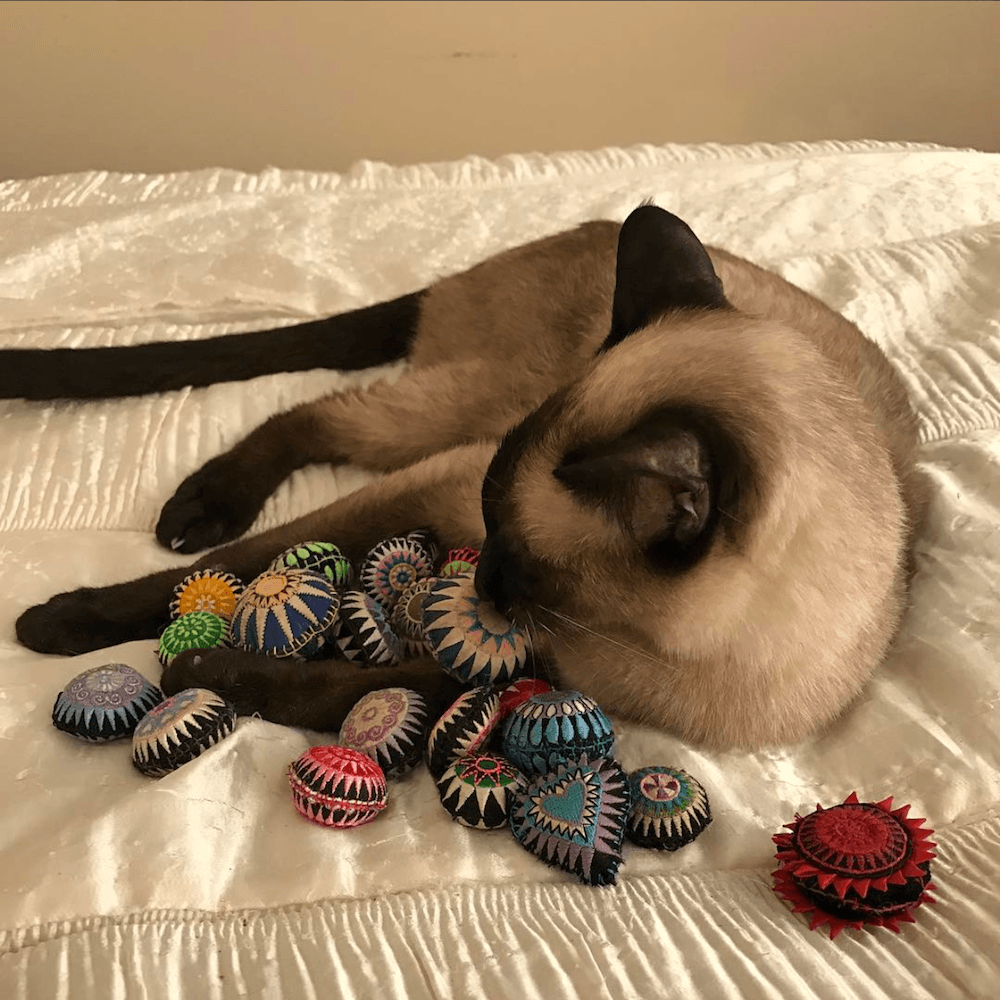 Cat with Scatterballs