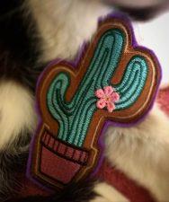 Pookie & Cactus