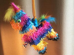 Hanging Catnip Piñata