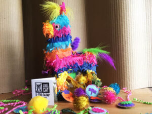 Piñata for Cats with Filling