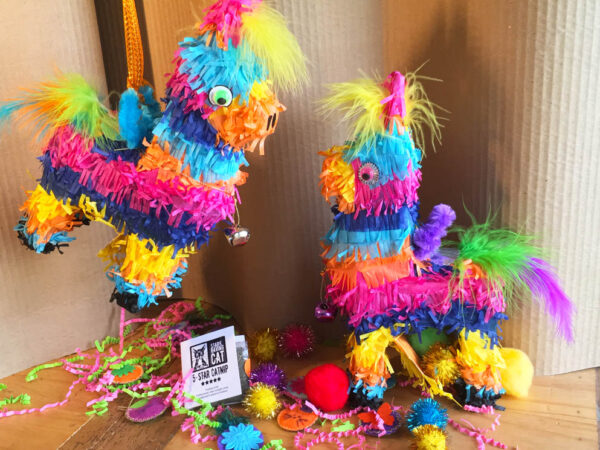 Catnip Toy Piñatas for Cats with Filling