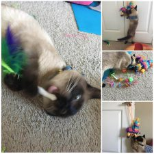 Fa and Piñata Collage