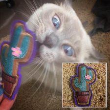 Phoebs & Catnip Cactus