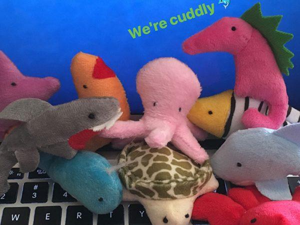 Cuddly Catnip Beach Babies
