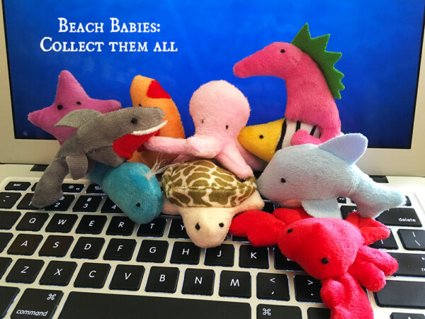 Beach Babies Catnip Toys on Laptop