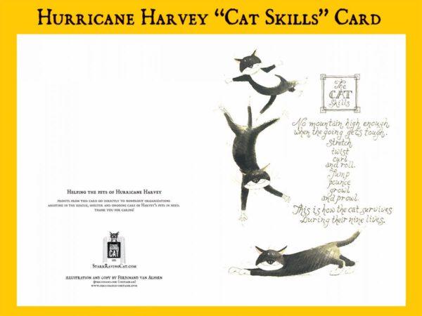 Cat Skills Card