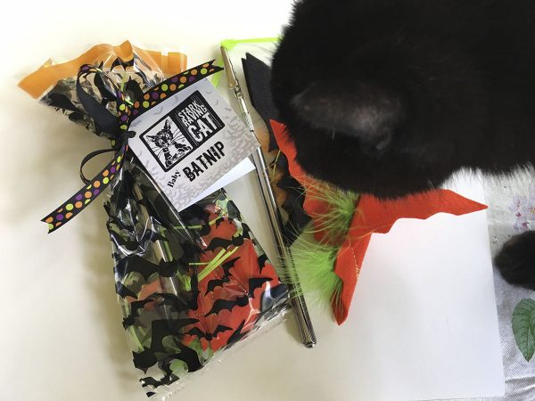 Wolfie Sniffs Halloween Batnip Set with Wand