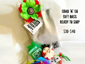 Grab n Go Catnip Toy Gift Bag