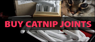 Buy Catnip Joints