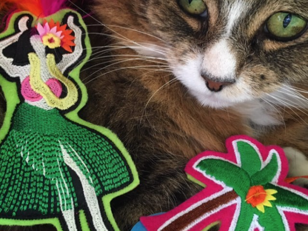 Tamale with Hula Set Catnip Toys