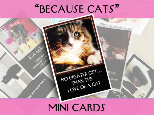 Because Cats MiniCards Tamale