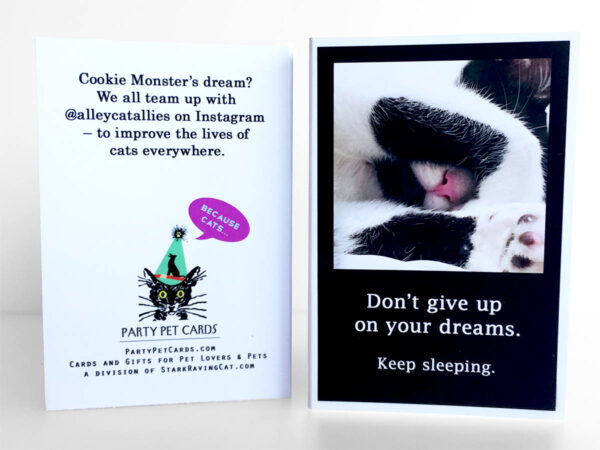 Because Cats MiniCards Cookie