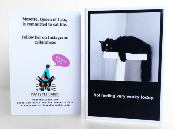 Because Cats MiniCards Mosette