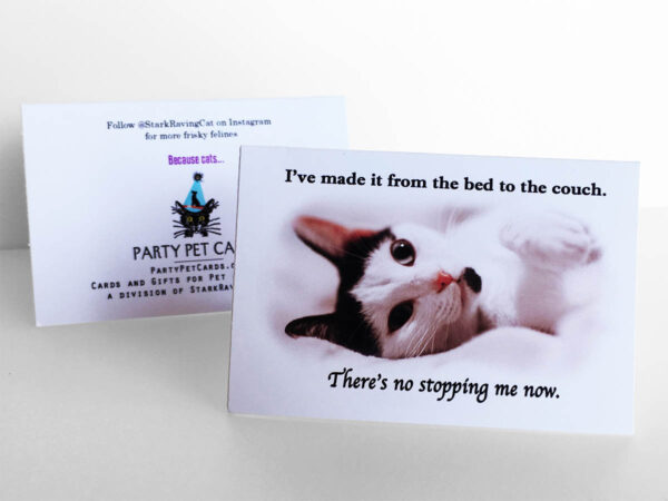 Because Cats MiniCards No-Stopping