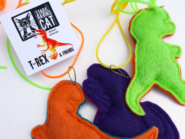 Dinosaur Cat Toys Backside