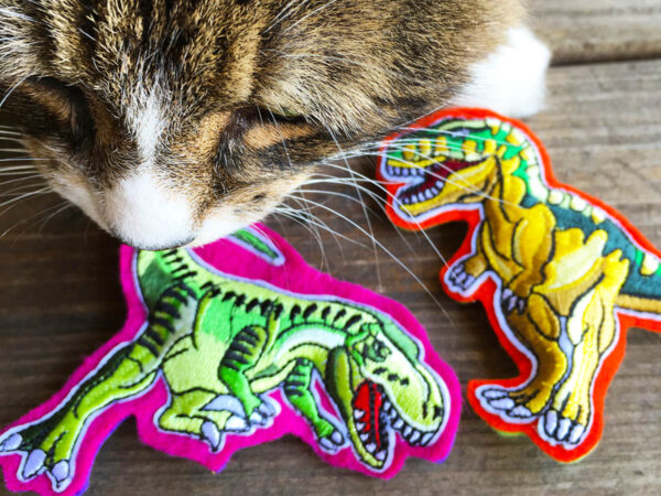 Tamale and Dinosaur Cat Toy