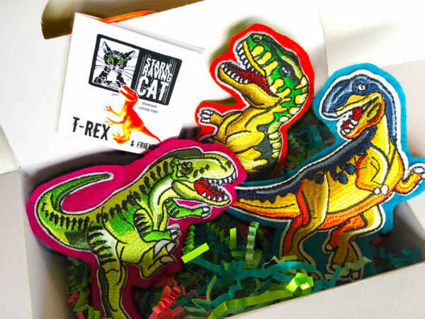 Dinosaur Cat Toys Box