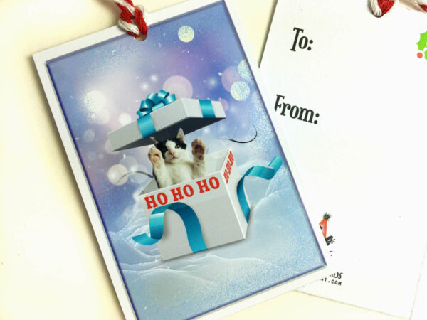 Kitten Holiday Gift Tag