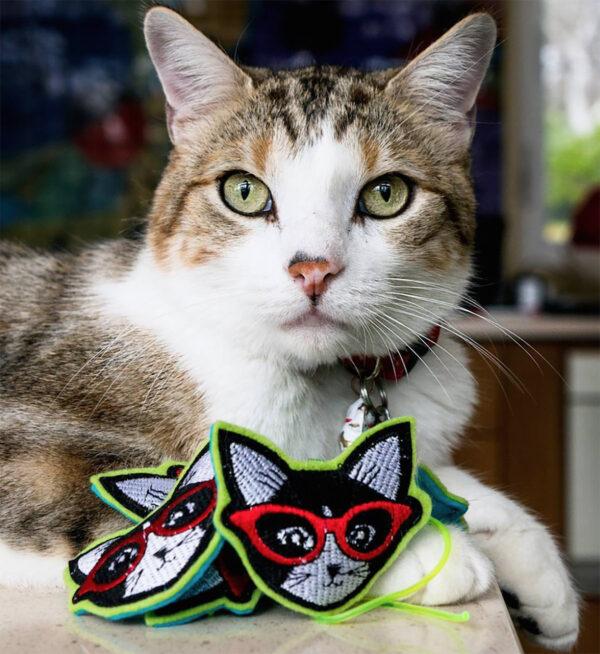 Prosciutto & coolcats