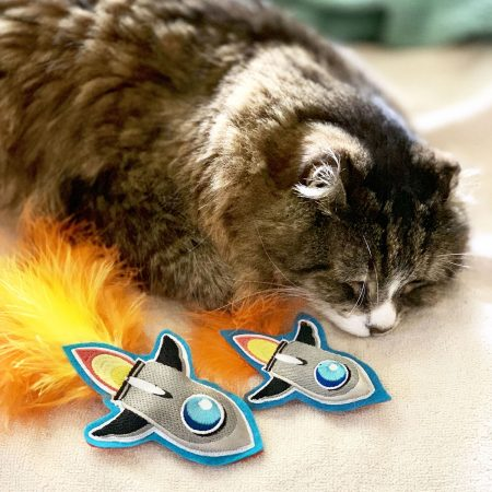 Mini-Rocket Catnip Toys
