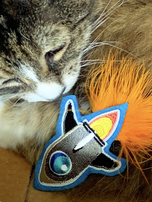 Mini-Rocket Catnip Toy