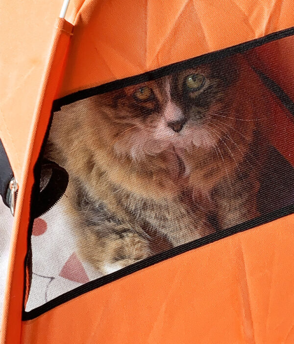 Luxury Pet Tent Window