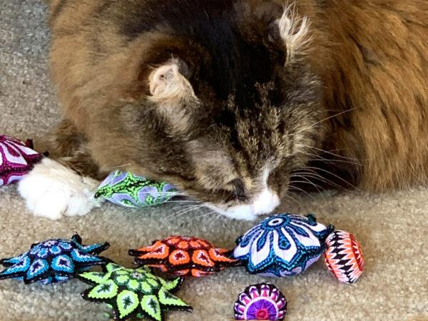Scatterballs Stars Cat