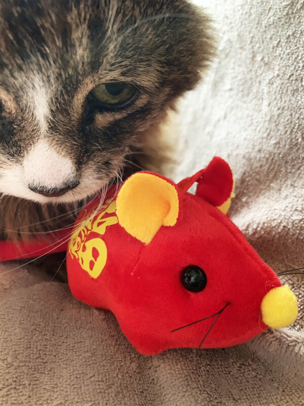 Tamale and Lunar New Year Catnip Mouse