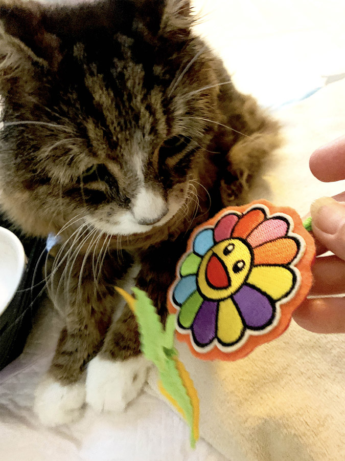 Happy Flower Catnip Cat Toy